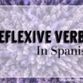 Reflexive Verbs in Spanish